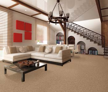 Carpet Flooring in Kalamazoo, MI.